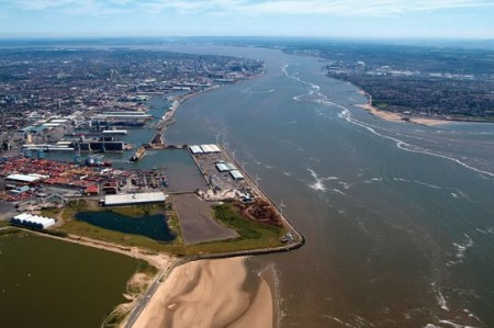 The Port could soon be home to a green plant