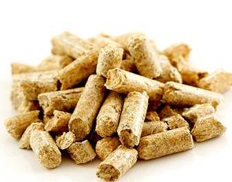 Work on the new wood pellet plant will commence immediately