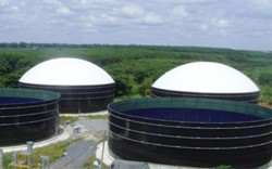 Kirk Environmental plans for the 1.2MW AD facility to begin operations by Q2 2011