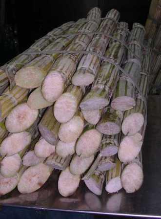 Petrobras Biocombustível and Grupo São Martinho are expanding sugarcane processing capacity at the Boa Vista plant