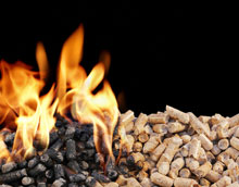The plant will produce 275,000 tonnes of black wood pellets