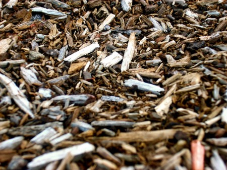 wood chips copyright emmanicolebush