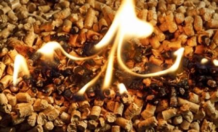 woochip biomass