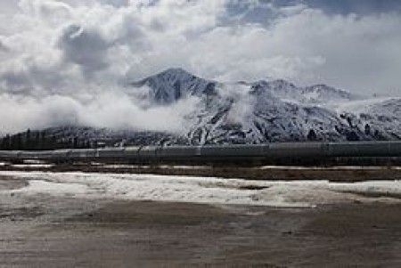 The Alyeska oil pipeline, which runs from Prudhoe Bay to Valdez. This is on S.R. 4, south of Delta Junction. It's on a fault line, so this stretch is built to withstand a substantial earthquake -- the pipe can move several feet in any direction without breaking. Image courtesy of Malcolm Manners, via Wikimedia Commons