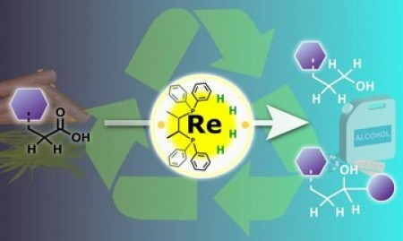 A rhenium catalyst in a high oxidation state is used to hydrogenate carboxylic acids present in organic waste, producing a range of useful alcohol products. Image courtesy of Nagoya University