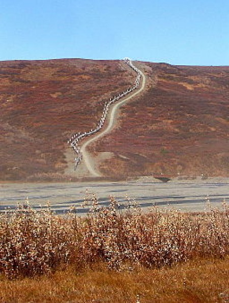 The Trans-Alaska Pipeline crossing a ridge, Tanana River is in the foreground (via Wikimedia Commons, by Beeblebrox).
